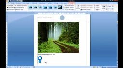 WORD_2007_INSERER UNE IMAGE CLIPART